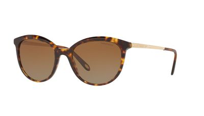 Polarized Brown Gradient Sunglasses