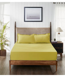 Percale Apple Green Fitted Sheet Double Size