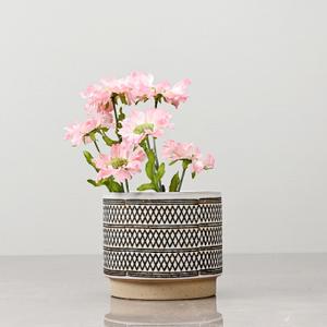 Small Ivory Ceramic Vase