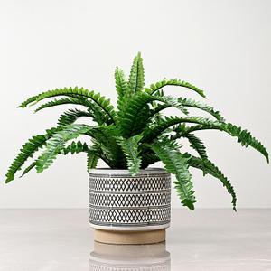 Medium Ivory Ceramic Vase
