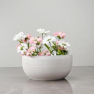 Modern Cream Ceramic Bowl Vase