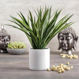 Grass in Ceramic Pot