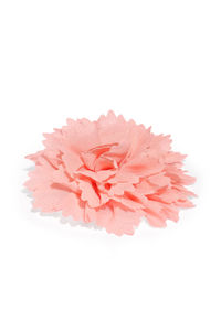 Girls Coral Pink Alligator Hair Clip