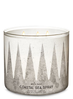 Coastal Sea Spray 3-Wick Candle