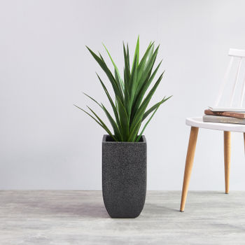 Square Black Contemporary Planter
