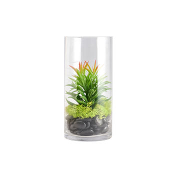 Green Mixed Succulent in Large Glass Bottle