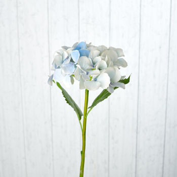Cream Blue Hydrangea Spray