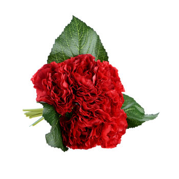 Set of 2 : Red Carnation Bouquet