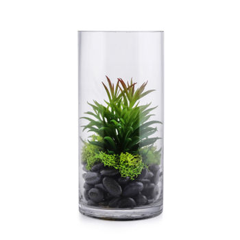 Mixed succulent in glass bottle