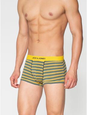 Yellow Striped Brazilian Trunks