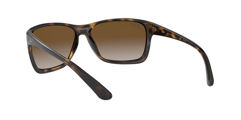 Light Grey Gradient Brown Sunglasses