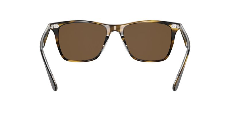 True Brown Polarized Sunglasses