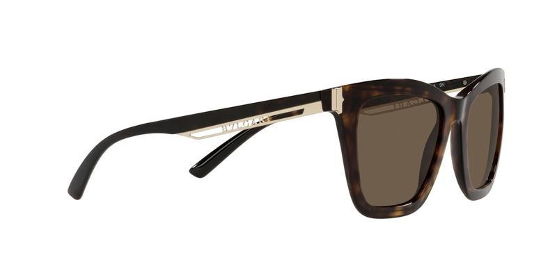 Dark Brown Sunglasses