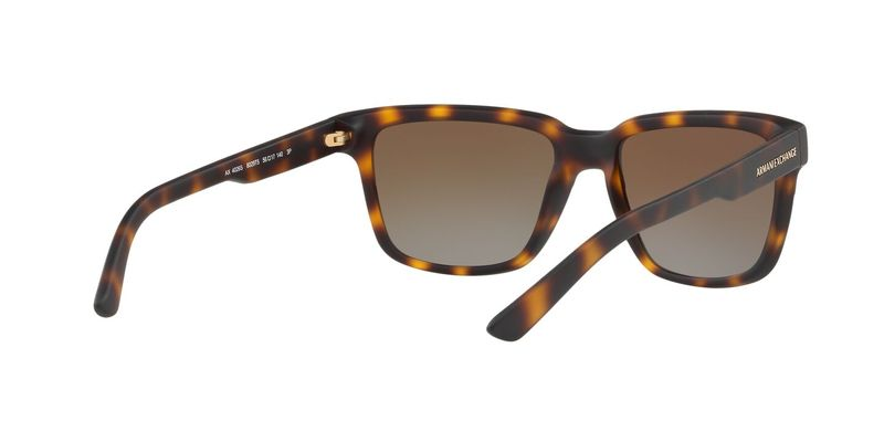 Polar Brown Gradient Sunglasses