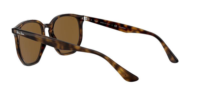 Polar Brown Sunglasses