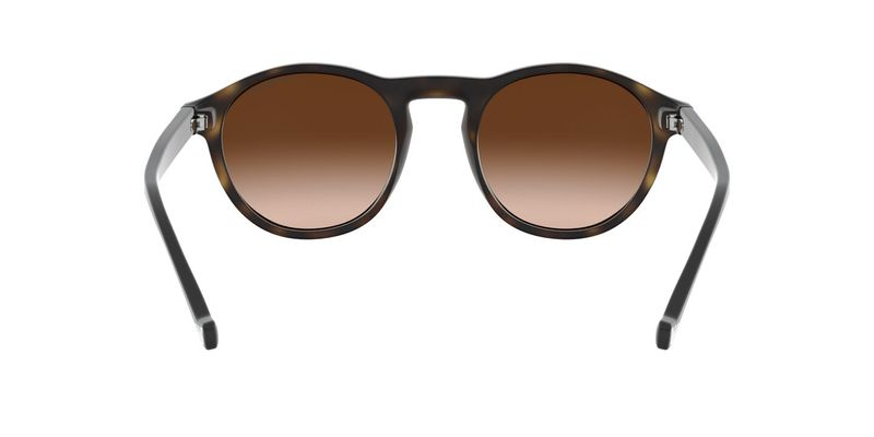 Gradient Brown Sunglasses