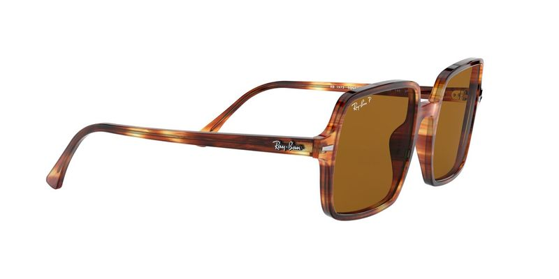 Brown Polar Sunglasses