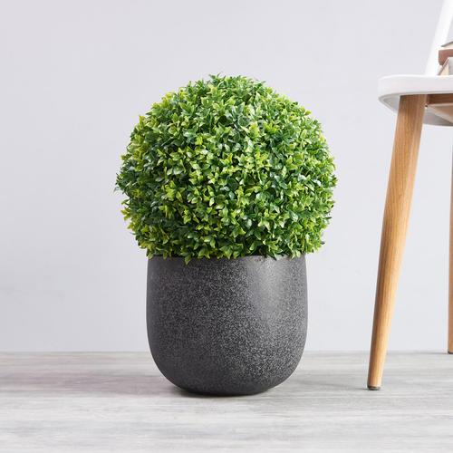 Small Sea grass Ball Topiary