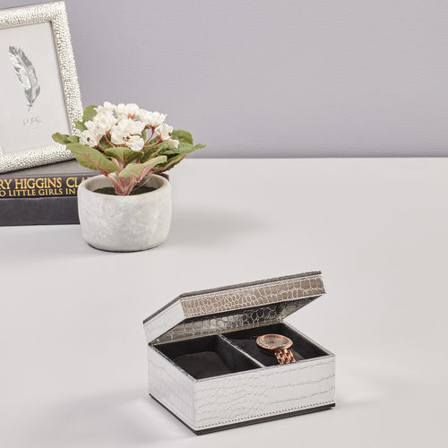 2 Box Silver Croco Watch Organizer