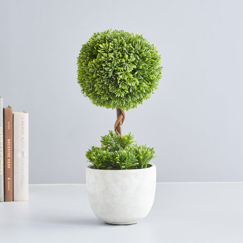 Potted Botanical Grass Topiary