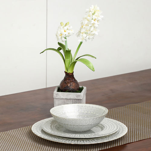 Potted White Hyacinth