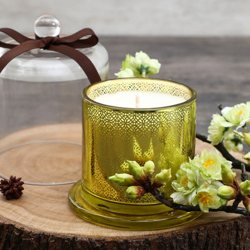 Island Olive Glass Jar Candle With Dome