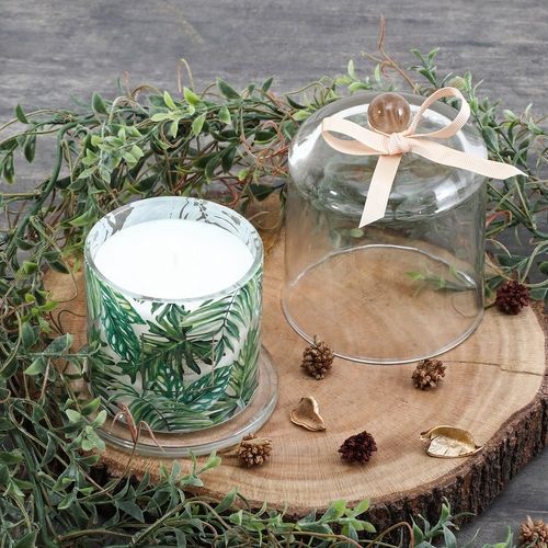 Green Silver Moon Glass Jar Candle With Dome