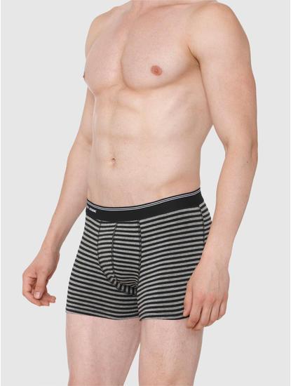 Grey Striped Trunks