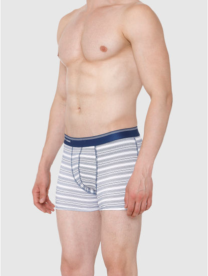 Blue Striped Trunks