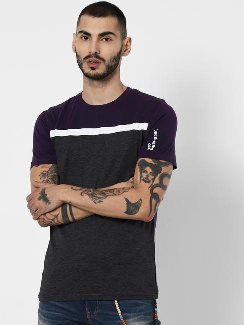 Purple Colourblocked Crew Neck T-shirt