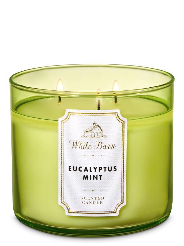 Eucalyptus Mint 3-Wick Candle